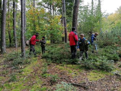 Vorschaubild zur Meldung: NaturparkmodulKlasse3b - Mit dem Förster im Wald