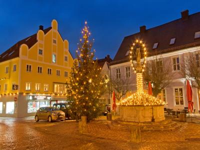 Foto zur Meldung: Die Stadt Mainburg freut sich wieder über Christbaumspenden