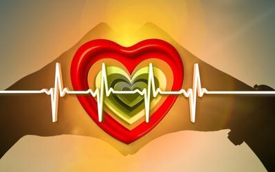Bild der Meldung: Herz und Autonomie