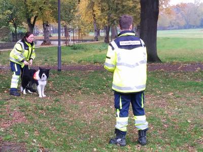 Stadt Perleberg | Antonia Zado bereitet den Hund für den Einsatz im Hagen vor.