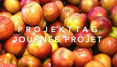 Vorschaubild zur Meldung: Projet « Pommes » - 1. Klassen