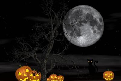 Foto zur Meldung: Halloween und Wanderungen