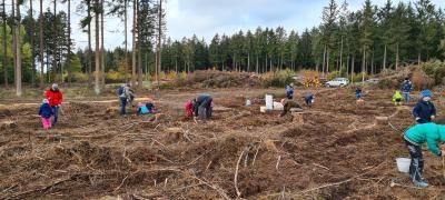 Pflanzaktion mit Kindern im Gemeindewald