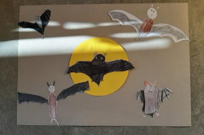 Foto zur Meldung: Klasse 3AA: Fledermäuse