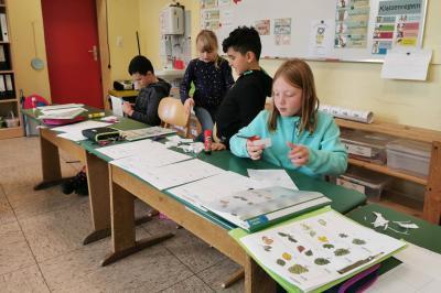 Foto zur Meldung: Klasse 2c: Herbst