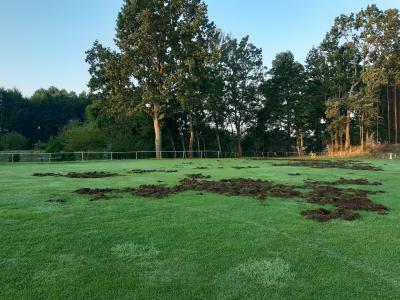Foto zu Meldung: Blau Weiß Rädel richtete verwüsteten Sportplatz wieder her