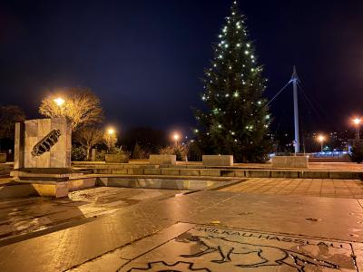 Weihnachtsbaum auf dem Markt aufgestellt