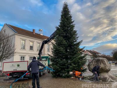 Mit Motorsäge und Hebebühne wurde der Platz für den Weihnachtsbaum vor dem Pritzwalker Rathaus vorbereitet. Foto: Andreas König/Stadt Pritzwalk