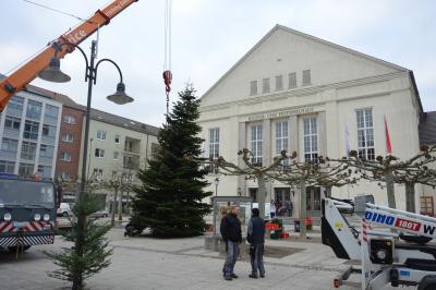 Eine Douglastanne wurde auf dem Paul-Lincke-Platz aufgestellt I Foto: Martin Ferch