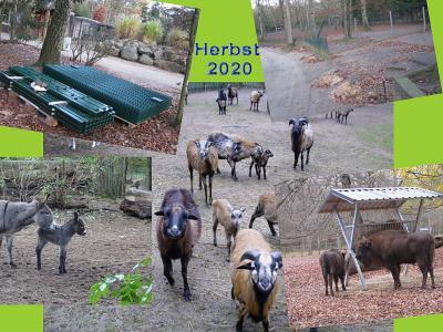 Vorschaubild zur Meldung: Baumaßnahmen im Herbst 2020