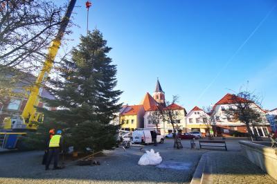 Bild der Meldung: Die Stadt Calau legt ihr weihnachtliches Kleid an