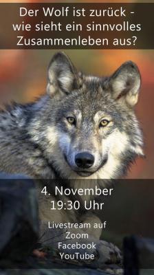 Bild der Meldung: Der Wolf ist zurück - wie sieht ein sinnvolles Zusammenleben aus?