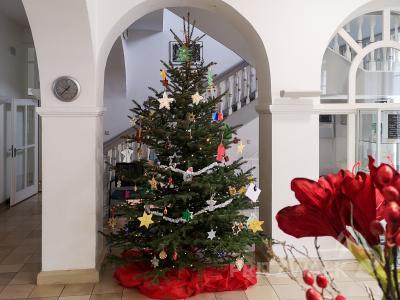 Der Weihnachtsbaum im Rathaus trägt dieses Jahr eine bunte Mischung an Baumschmuck aus vielen Kindereinrichtungen. Fotos: Beate Vogel