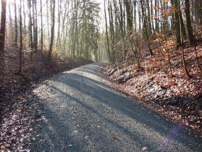 Werra- Obermain-Radweg auf 1km länge erneuert!