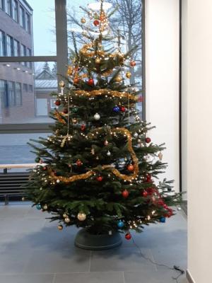 Foto zur Meldung: Weihnachtsbaum - zum ersten Mal im Neubau