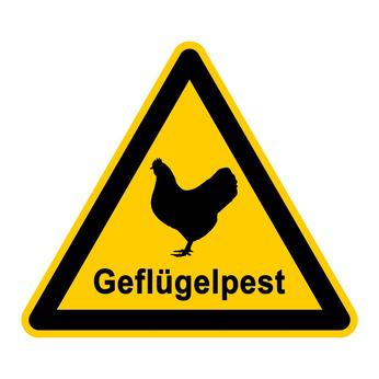 Foto zu Meldung: Aufstallungspflicht im gesamten Landkreis zum Schutz gegen die Geflügelpest