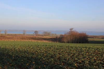Bild der Meldung: Wanderweg in Borgwedel kommt