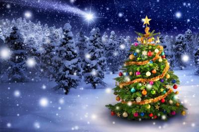 Bild der Meldung: Besinnliche Weihnachtsfeiertage  und alle guten Wünsche  für ein gesundes und erfolgreiches Jahr 2021.