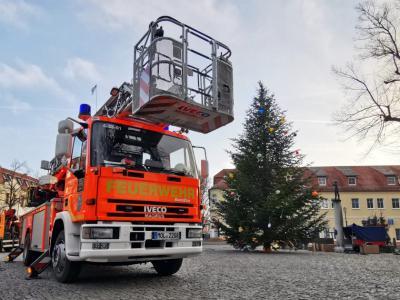 Unterstützung bei der Aufstellung des Seelower Weihnachtsbaums