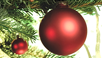Bild der Meldung: Weihnachts-und Neujahrswünsche