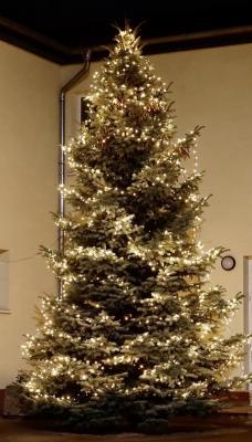 Foto zu Meldung: Weihnachtsgruß vom Bürgermeister