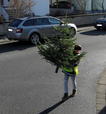 Foto zur Meldung: Weihnachtsbäume 2021 - Alternative zur Sammelaktion