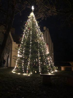 Der wunderschöne beleuchtete Christbaum von Paretz