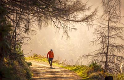 Bild der Meldung: Ich gehe, also bin ich (gesund) - Der Segen der 5000 Schritte