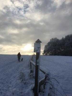 Vorschaubild zur Meldung: Winterimpressionen aus Rüscheid