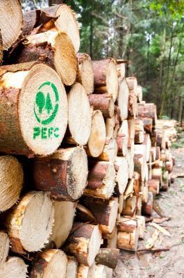 Quelle: PEFC Deutschland