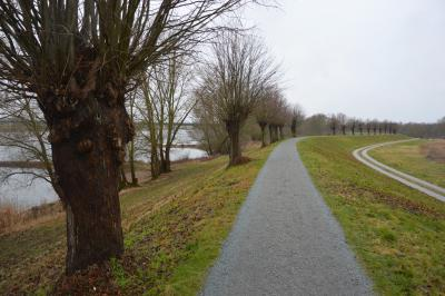 Bild der Meldung: Elberadweg: Sanierung zwischen Klärenweg und  Wentdorf