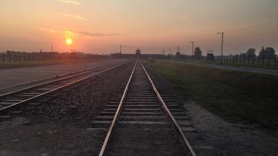 Auschwitz Birkenau – Gleise, die in den Tod führten,ZDF-Winfried Laasch