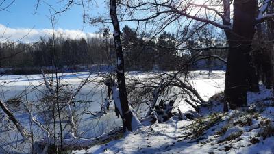 Foto zur Meldung: Winterspaziergang