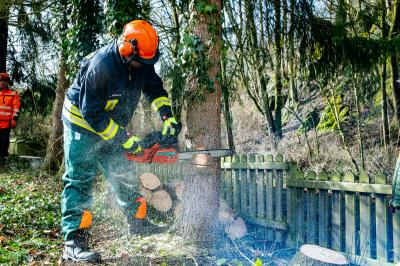 Technische Hilfe Wald