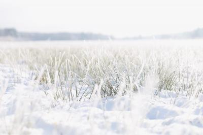 Foto zu Meldung: Ungewohnter Wintereinbruch