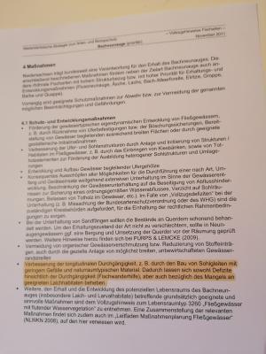 Steht Sachsen-Anhalt wirklich früher auf?
