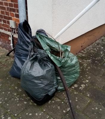 Müll sammeln im Nordertor