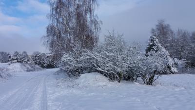 Foto zu Meldung: Vorbereitungen für den Schneesturm