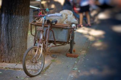 Lastenfahrräder für Sachsendorf-Madlow – für alle!