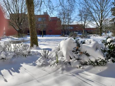 Bild der Meldung: Wintermärchen