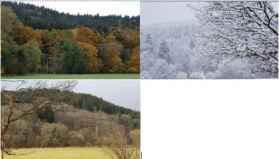 Wandel der Jahreszeiten