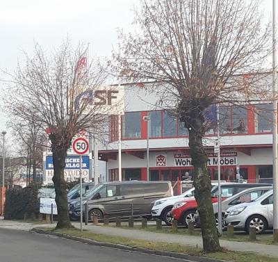 Betroffene Kopfbäume in der Ehrenfried-Jopp-Straße