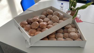 Bild der Meldung: Endlich wieder Rosenmontag (Pfannkuchen)!