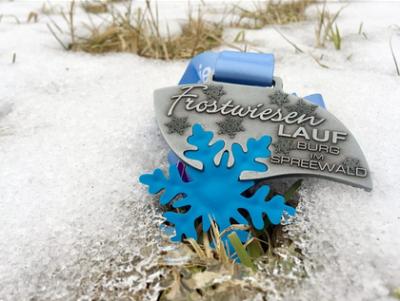 Virtuell über Frostwiesen