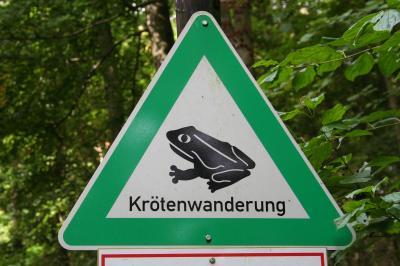 Schild Krötenwanderung