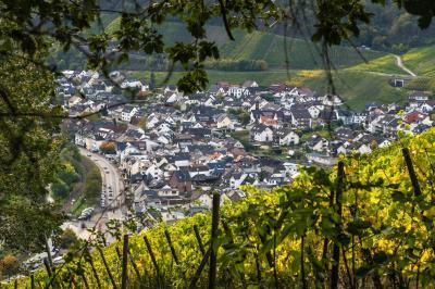 https://pixabay.com/de/photos/weinbau-weinreben-weinberg-wein-4562377/