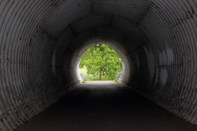 https://pixabay.com/de/photos/tunnel-baum-licht-dunkel-zentrum-4031916/