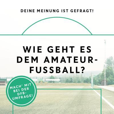 Bild der Meldung: Deine Stimme ist gefragt: Wie geht es dem Amateurfußball?