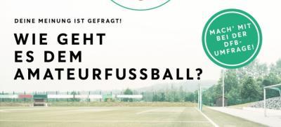 """Bild der Meldung: DFB: Offener Brief: """"Kinder zurück auf den Platz"""""""