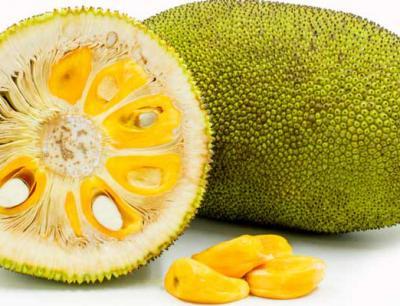 Jackfruit - was ist das?